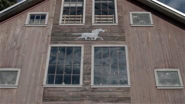 Spirit Horse Farm